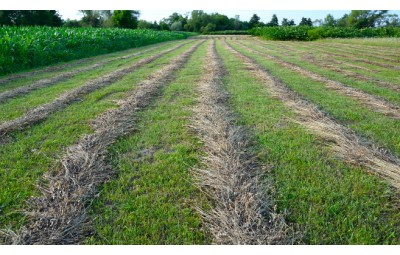 Agricultural land management for better productivity