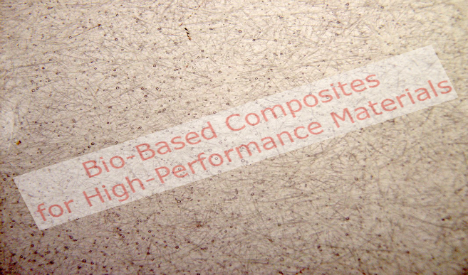 Bio Based Composites for High Performance Materials